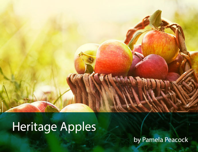 heritage-apples