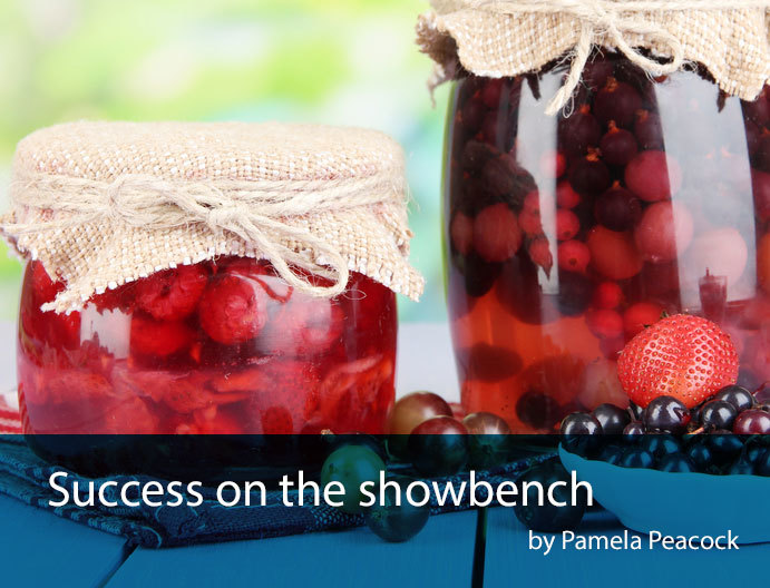 success-on-the-showbench
