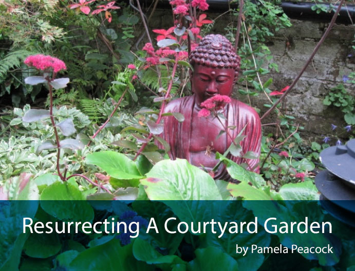 courtyard-intro-shot